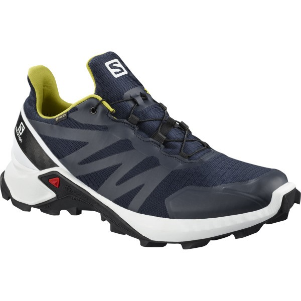 SALOMON SUPERCROSS GTX HERREN
